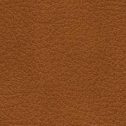 Bicolore-Ontano-5030-Y65R